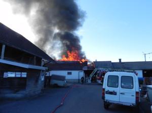 Beim Brand entstand Sachschaden von mehreren zehntausend Franken. (Bild: Kapo TG)