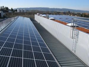 Der grosse «Sonnenteppich» auf den Dächern der Strähl Käse AG sorgt für Öko-Energie. (Bild: zvg)