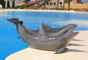 Delfine im Connyland. (Bild: Thurgau Tourismus)