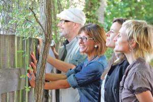 Blick über den Grenzzaun an der Wiesenstrasse (v.l.): Bernard Roth, Dorena Raggenbass, Melanie Mock und Elisabeth Wegmann. (Bild: kb)