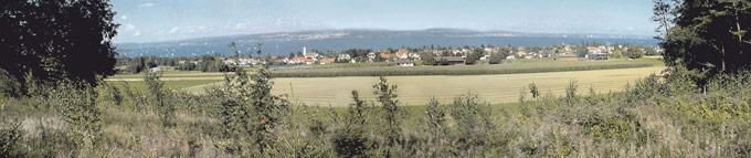 Blick auf den See von der Bottighofer Waldruhestätte. (Bild: zvg)
