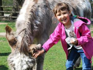 Vor allem Kinder hatten beim Tag der offenen Tür im Tierpark Kreuzlingen ihren Spass. (Bild: Thomas Martens)