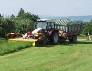 Die Landwirtschaft hat im Thurgau nach wie vor eine grosse Bedeutung. (Bild: Archiv)
