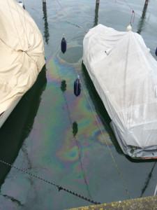 Verschmutztes Wasser zwischen den Booten. (Foto: Roger Ilg, Feuerwehr Kreuzlingen)