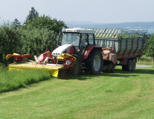 Jobs in der Landwirtschaft werden immer weniger. (Bild: Archiv)