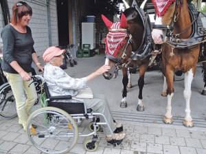 Die Vorfreude auf die Pferdewagenfahrt war gross. (Bild: zvg)