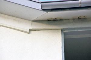 Rückstände von Schwalbennestern an der Fassade des Seelofts. (Bild: sb)