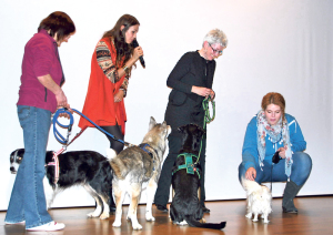 Die Tierische Show des Tierschutzvereins Kreuzlingen. (Bild: Thomas Martens)