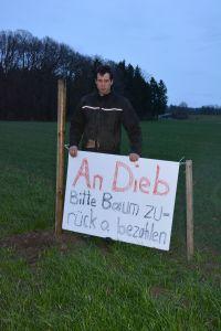 Landwirt Daniel Tschannen vermutet, dass Diebe ihm einen Baum stahlen. (Bild: zvg)
