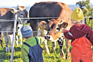 Auf dem WurzelKinderHof wachsen Kinder mit der Natur auf und erleben den Zyklus der Tiere mit. (Bild: zvg)