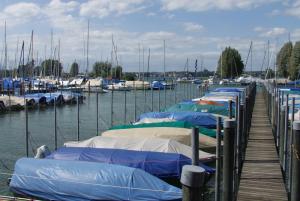 Bootshafen Seegarten. (Bild: Archiv)