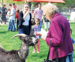 Am Tierpark haben Alt und Jung gleichermassen ihre Freude. (Bild: Thomas Martens)