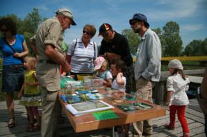 Libellenexperte Manfred Hertzog (links im Bild) nimmt die Bewohner des Amphibienweihers genau unter die Lupe. (Bild: IDK)