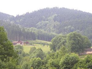 Schwarzwaldlandschaft. (Bild: zvg)