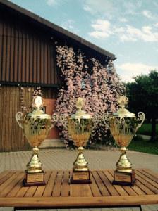 Die Siegerpokale der Ostschweizer Meisterschaft im Chriesistein-Weitspucken. (Bild: zvg)