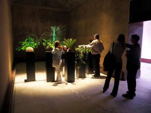 """BesucherInnen testen """"Plant Growing."""" (Bild: zvg)"""