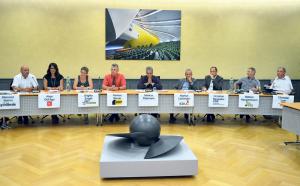 Diese acht wollen in den Nationalrat (v.l.): Klemenz Somm (GLP), Aliye Gül Agir (SP), Brigitta Engeli (GP), Markus Berner (BDP), Moderator Markus Thalmann, Markus Lüchinger (EDU), Christian Neuweiler (FDP), Markus Hausammann (SVP/bisher) und Christian Lohr (CVP/bisher). (Bild: Thomas Martens)