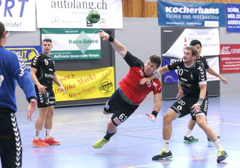 handball 1 liga schweiz