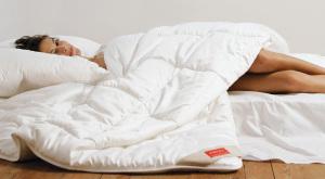 Passende Matratzen, kuschelige Decken, Auflagen, Kissen und massgeschneiderte Polster finden sich im Badertscher Fabrikladen.(Bild: zvg)