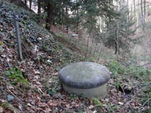 Aufgrund der hervorragenden Wasserqualität aus dem Waldgebiet und aufgrund des optimalen Schutzes der Wasserfassung vor Schadeinflüssen, haben viele Gemeinden ihre Wasserfassungen im Wald erstellt. (Bild: zvg)