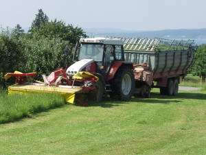 Der Strukturwandel in der Landwirtschaft geht weiter. (Bild: Archiv)