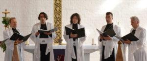 Der Angelicus Chor. (Bild: zvg)
