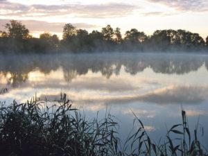Lengwiler Weiher am Morgen.(Bild: Philip Taxböck)