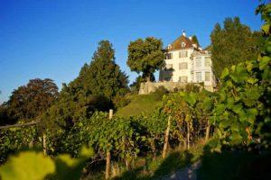 Herbstliche Farben ziehen nun auch auf dem Schloss Arenenberg ein. (Bild: zvg)