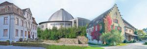 Das Museum Rosenegg, das Planetarium und das Seemuseum könnten künftig zusammen verwaltet werden.(Bilder: archiv)