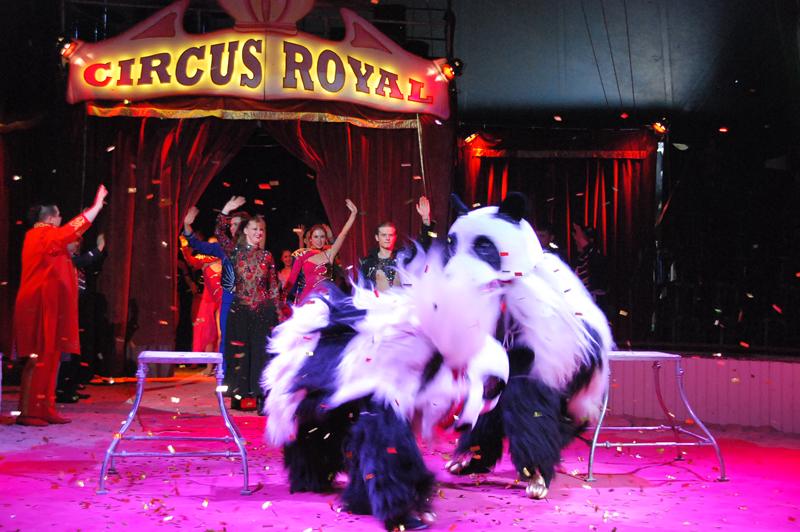 Circus Royal in Kreuzlingen | KreuzlingerZeitung